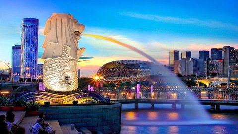 Du học Singapore thì nên chọn học ngành nào?